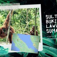 Sultry Bukit Lawang, Sumatra
