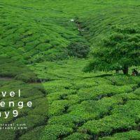 Travel Challenge – Day 9