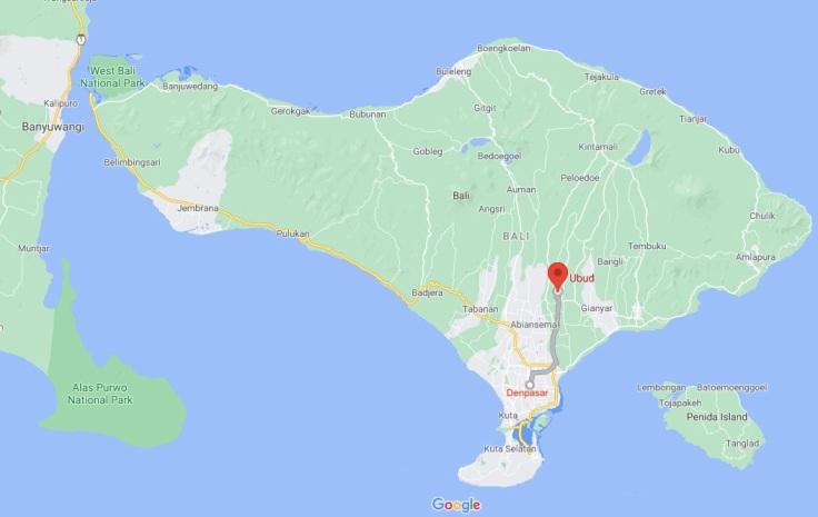 Denpasar, Ubud, Bali, Indonesia, SE Asia