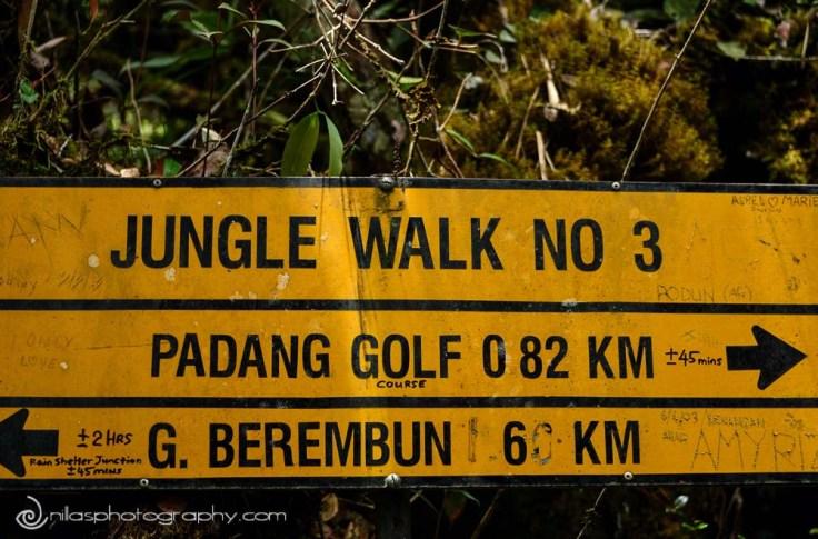 trekking, Cameron Highlands, Malaysia, SE Asia