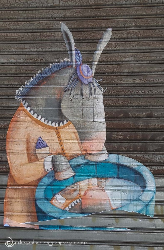 street art, Old Town, Cosenza, Calabria, Italy, Europe
